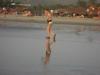 morgim-beach-img_5117p