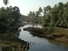 siolim-2012-02-24-126