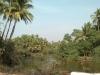 siolim-2012-02-24-133